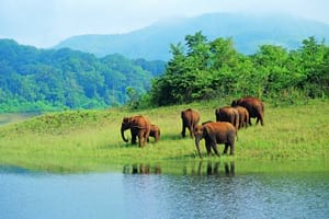 Exciting Kerala 3 days tour package