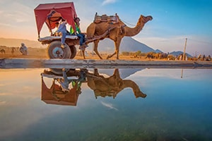 Golden Triangle Tour with Ajmer Pushkar