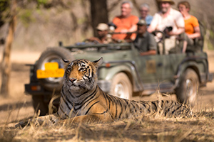 Golden Triangle Tour with Ranthambore Park