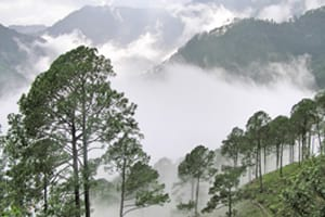 Nainital Tour Package 9 days